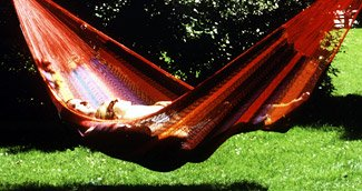 garden hammock - click here to visit the hammock page!